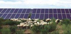 亿利洁能再创新生态光伏新模式